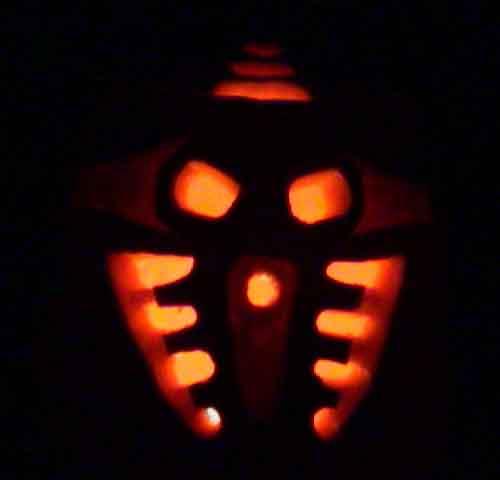 Pakari Pumpkin (Dark)
