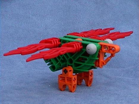 Flame-winged Hummingbird