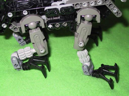 Legs Closeup