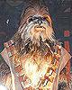 Wookie Costumes